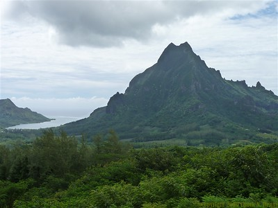 "at the ""Belvedere"" lookout point on Moorea"