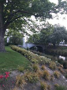 Avon River - Christchurch