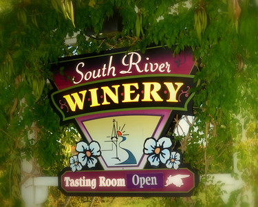 South River Vineyards Geneva, Ohio 10-19-2015