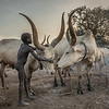 Mundari boy, South Sudan