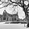 Tintern Abbey in Snow 2