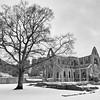 Tintern Abbey in Snow 1