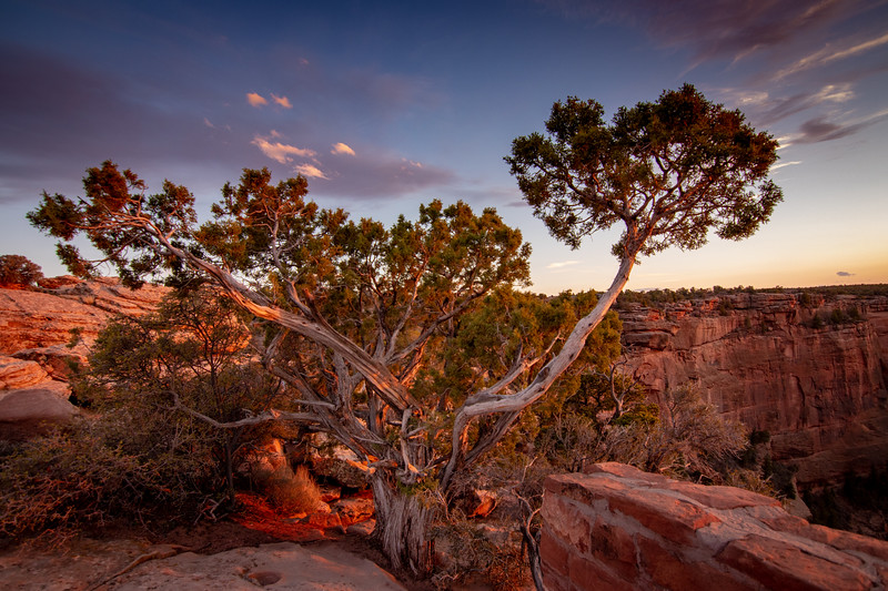 Spider Canyon Overlook, Canyon de Chelly Arizona