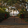 Oaklyn Plantation<br /> <br /> Oaklyn Plantation, straddling the Old Charleston Road at Black Creek is of historical significance as one of the major plantation establishments of the county and as the seat of the Williamson family for more than 200 years. The district includes 49 contributing resources and 19 non-contributing resources. At the present time, the property contains a nineteenth century plantation house (ca. 1830s) with early twentieth century alterations, an avenue of oaks, and a flower garden; related domestic service buildings, including a brick kitchen, smokehouse, privy, garage, and servants' house; various nineteenth century and early twentieth century agricultural buildings including tobacco curing barns, tobacco packhouses, livestock barns, vehicle and equipment sheds, an engine-powered grist mill, a sawmill, a planer, a nineteenth century cotton gin, and a drive through barn and scales for mixing guano; nineteenth and early twentieth century tenant houses; the remains of a nineteenth century canal, a marl pit (min), charcoal making pits, underground drainage lines, open water wells, and a narrow gauge road (tram road); a nineteenth century pecan grove and grape arbor; and agricultural fields and pastures. Listed in the National Register February 2, 1995.