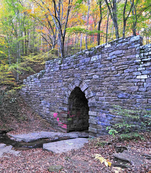 Poinsett Bridge<br /> <br /> Constructed in 1820, the Poinsett Bridge is one of the oldest spans extant in South Carolina. Its impressive construction of wedge shaped rocks, erected without concrete, has pointed Gothic arches that are rare in the state today. The bridge was part of the State Road from Charleston through Columbia to North Carolina that was designed in 1817-1819 by Joel Poinsett, director of the South Carolina Board of Public Works. The bridge was named in his honor. Poinsett also served as Secretary of War, Minister to Mexico, and first president of the National Institute for the Promotion of Science, forerunner of the Smithsonian. It is believed that Robert Mills designed the bridge. Mills became State Architect and Engineer for the South Carolina Board of Public Works in 1820. A brush drawing by Mills of a bridge with Gothic arches and keystone identical to those of Poinsett Bridge lends credence to the belief that Mills designed the bridge. Listed in the National Register October 22, 1970.