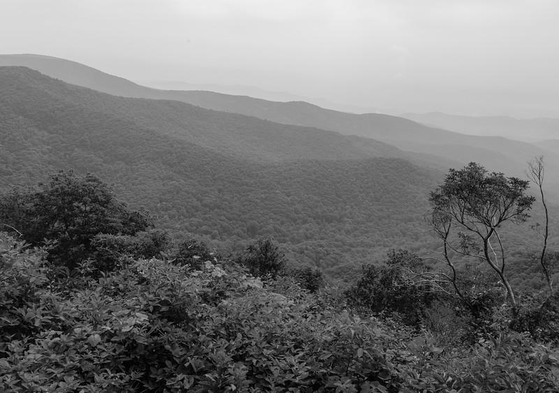 Blue Ridge Parkway - Bluff Mountain-0303
