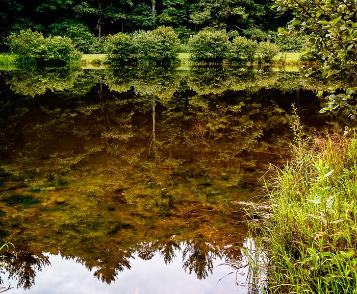 Blue Ridge Parkway - Little Glade Mill Pond-0257