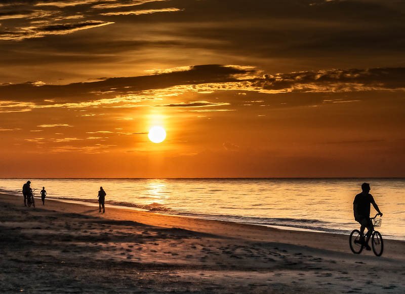 Sunrise Silhouettes-1