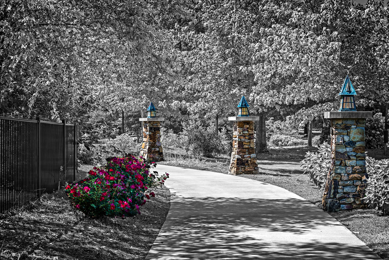 Lit Path & Roses-2