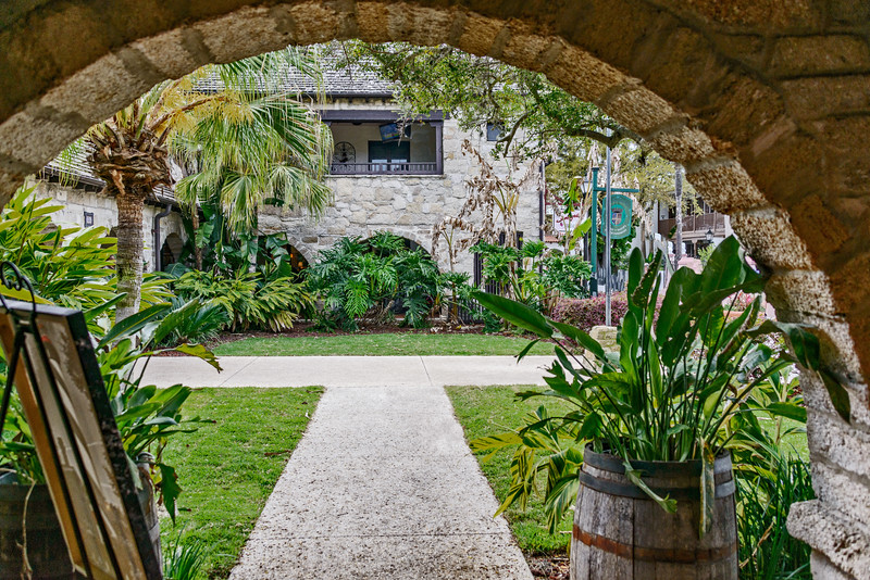 St Augustine - Plants through Arch 2-0123