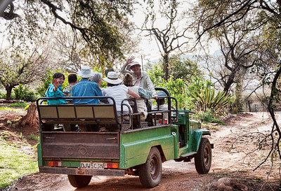 We switch to these open air vehicles for the ride up to Leshiba Wilderness, a large sanctuary at the 4,000 foot level.  Animals, art, beautiful people and such a spectacular setting.