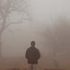 man-fog-labyrinth-1