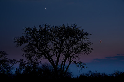 Jupiter and the moon lead in the approaching dawn and the start of one spectacular sunrise.