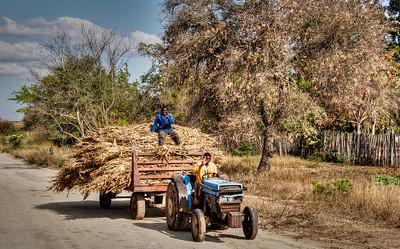 men-deliver-straw-tractor-1