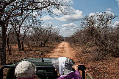 It's a long way through the white lion preserve land out to the main road.  We did this quite often.