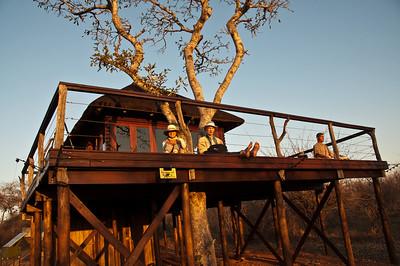 tree-house-1