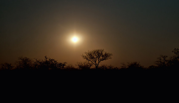 Driving into Mapungubwe as the sun was going down was spectacular.
