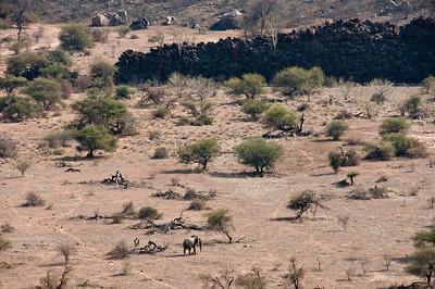 mapungubwe-elephant-1