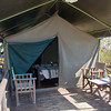 Mpila - our tent
