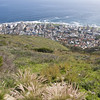 View of Seapoint/Greenpoint below from Signal Hill