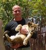 Wayne got a good hold on the fourteen-week lion cub.