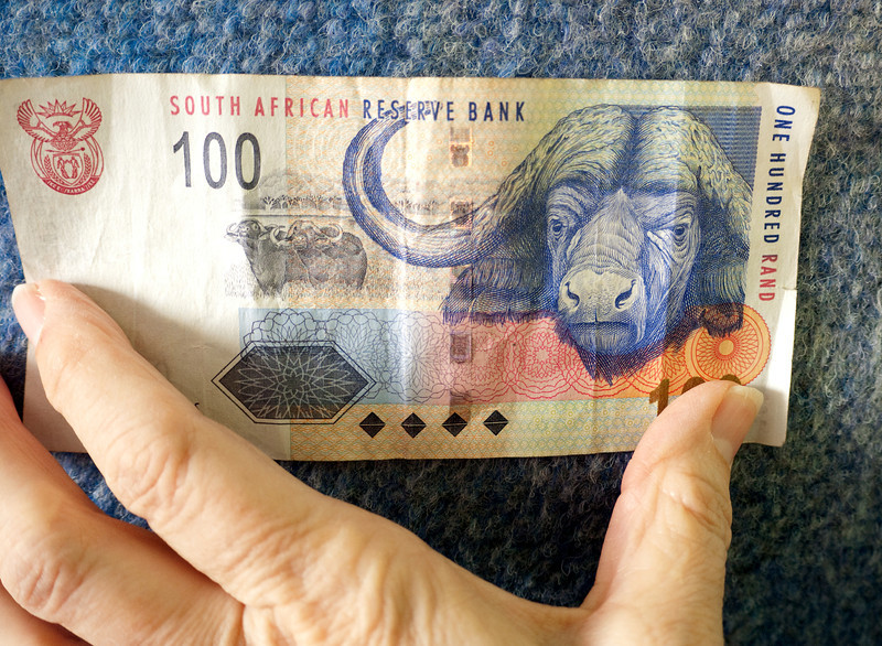 Cape Buffalo on 100 Rand bill, worth $10.84.