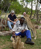 Fourteen-week-old cubs play with one of the handlers, Eric.