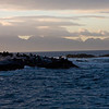 Sunrise over Seal Island