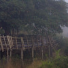 A misty morning at Lower Sabie