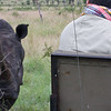 On the last day we each got to ride in the tracker seat.  Here is Frederic's close encouter with a rhino.