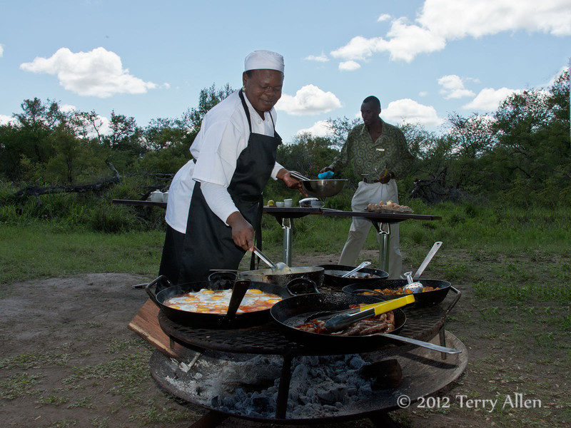 Breakfast-in-the-bush,-Ngala,-South-Africa