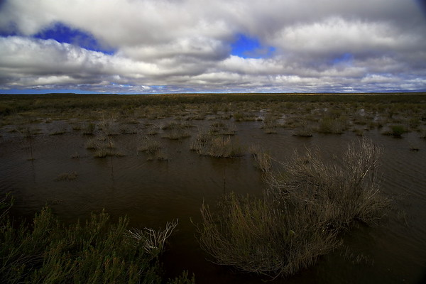 High altitude marshes