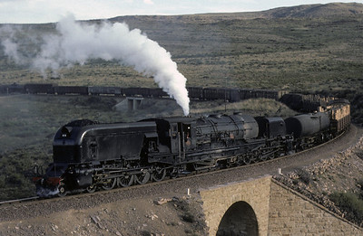 South African trains