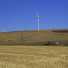 Wind turbines and agriculture