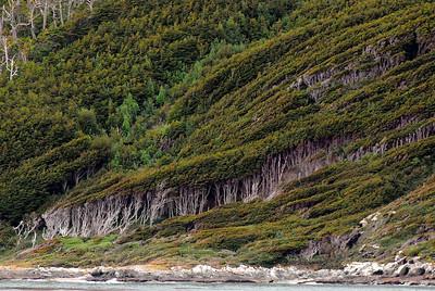 Cape Horn, Ushuaia & Punta Arenas