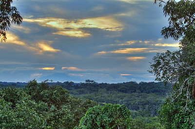 Image processed with Photoshop CS5  Sunset shot from the Wooden tower near Sacha Lodge, in the jungles of Ecuador, first processed from 5 individual shots and assembled in Phototomatix HDR soft, then finished in CS5.