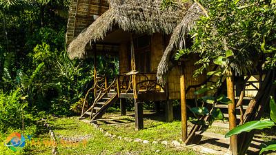 Cotococha Lodge, Tena, Ecuador