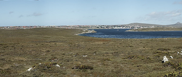 Panorama of Stanley, Falkland Islands from Gypsy Cove