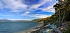 Bahia Ensenada Panorama, With Shoreline Trail