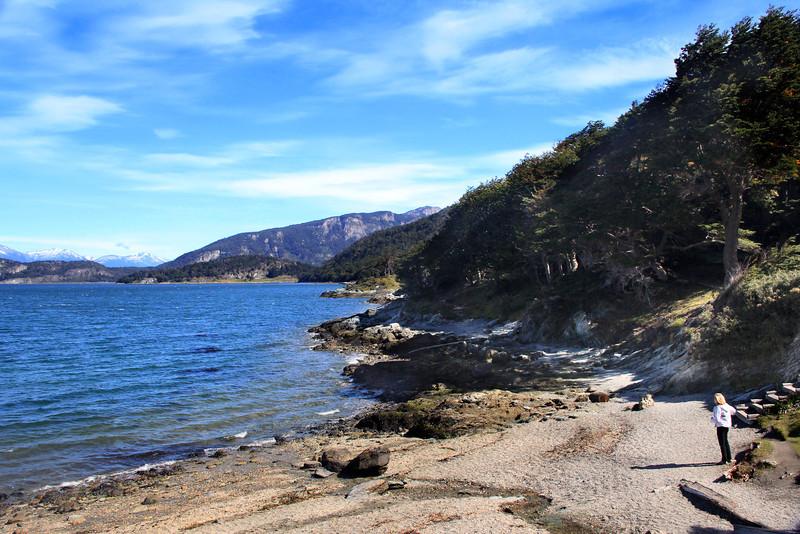 The Lovely Shoreline of Bahia Ensenada
