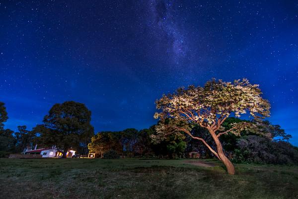 Estancia Nights