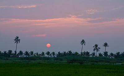 Lake Vembanad, Kerala