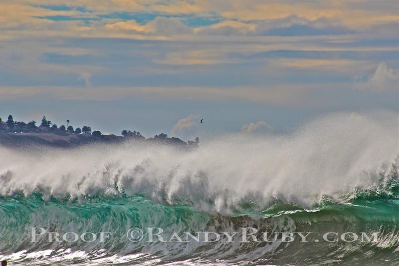 Weiamea  Redondo Bay.~    11/28/11