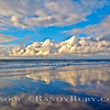 Heavenly Blues.~<br /> Taken: 11-20-10