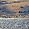 Metallic Sea.~<br /> Taken: 11-4-11