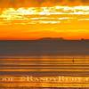 Santa Barbara Island.~<br /> 1/6/11