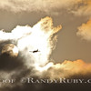 Sky King.~<br /> Taken: 3/13/12