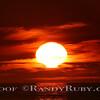 Wild Sunset~