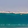 Heavy Offshore  w/Pelicans 3.~<br /> Taken: 11/30/11