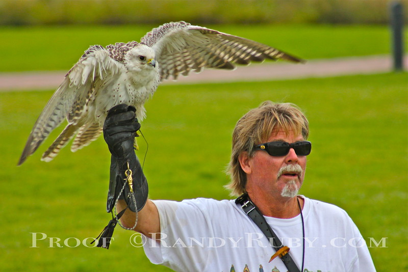 Rocky Post and his Beautiful Falcon.~<br /> taken: 7/21/11